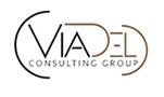 ViaDel Consulting Logo